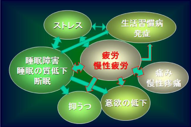 図2.健康が損なわれる事象間の相互関連と発症頻度増加への影響